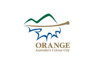 orange-council-business-logo.png